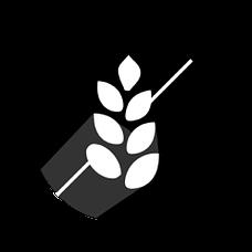 glutenvrij voedingsschema
