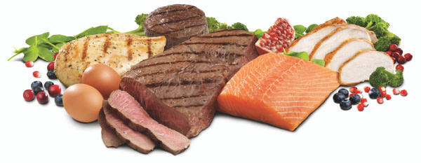 ketogeen-dieet-eiwitinname-niet-verlagen
