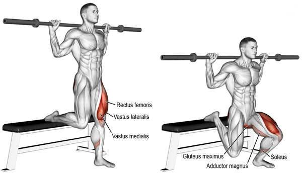 bulgarian split squat welke spieren