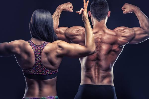 full body workout schema thuis